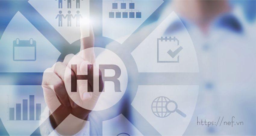 HR là gì? Tìm Hiểu Nhanh Về Nghề HR Tại Việt Nam