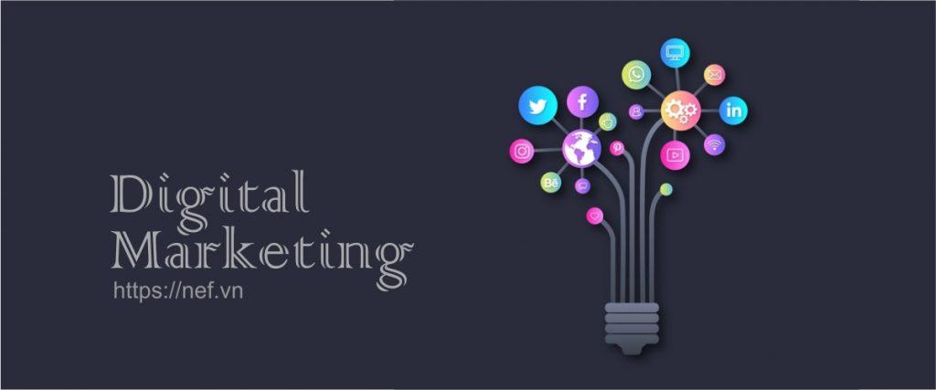 nef-digital-marketing