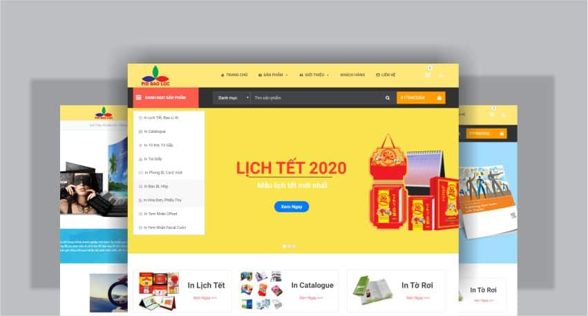 thiet-ke-website-in-an-2