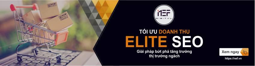 Dịch vụ Elite SEO tăng trưởng doanh thu thị trường ngách