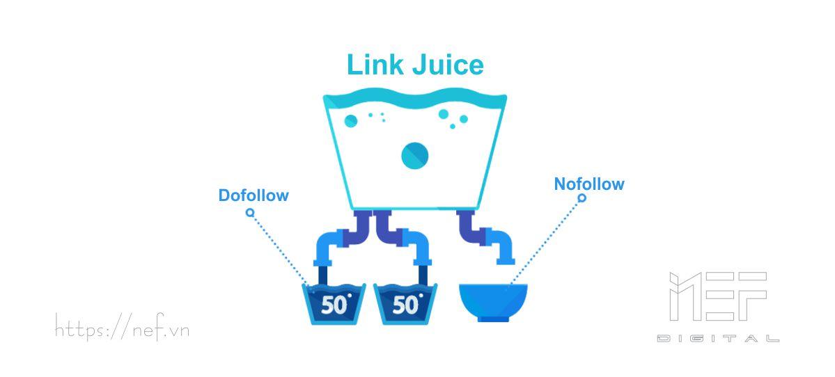 link-juice-nef-digital