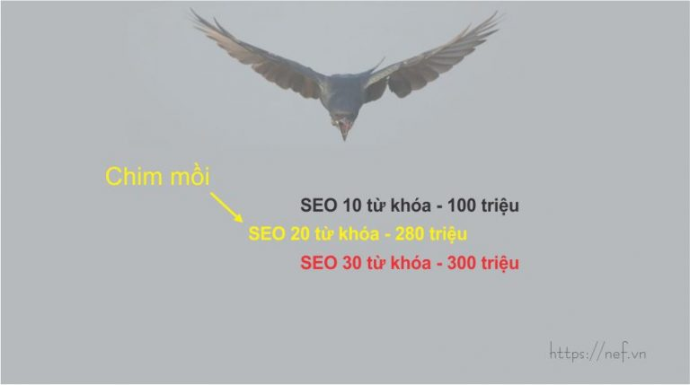 Hiệu ứng chim mồi trong chiến lược kinh doanh