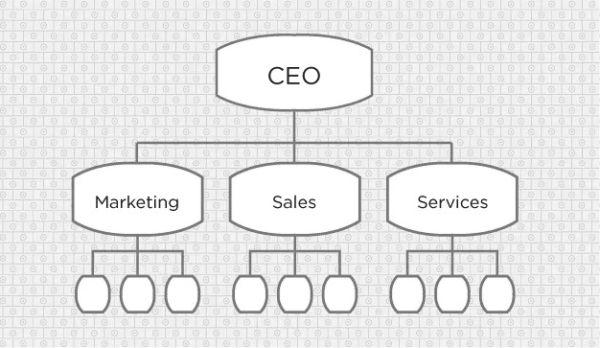 Sơ đồ tổ chức công ty theo chức năng